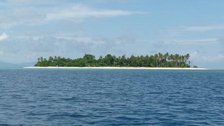 Tropisch eiland in Afrika