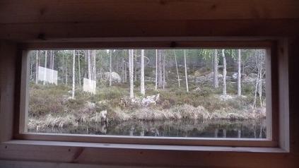Uitkijkraam van een observatiehut in Zweden